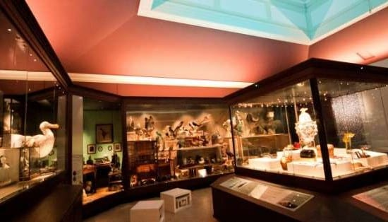 Year 11 Museum Visit