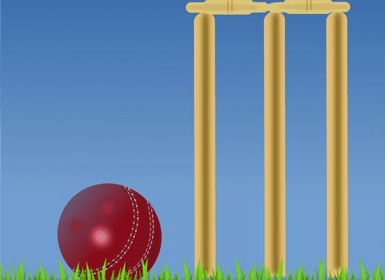 KS3 Girls' Cricket Day