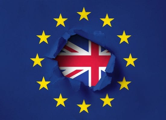 Y9 TCAT Brexit Debate